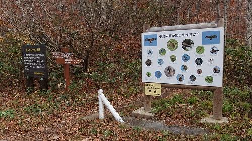 20131103_kanomatayama-002