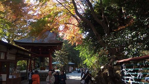20131116_mizusawayama-001