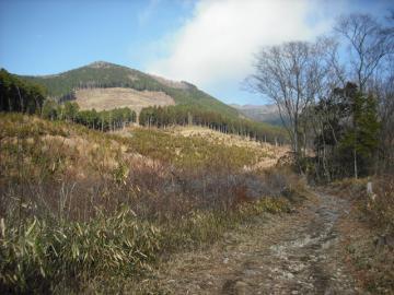 2010-10-17nagi 002