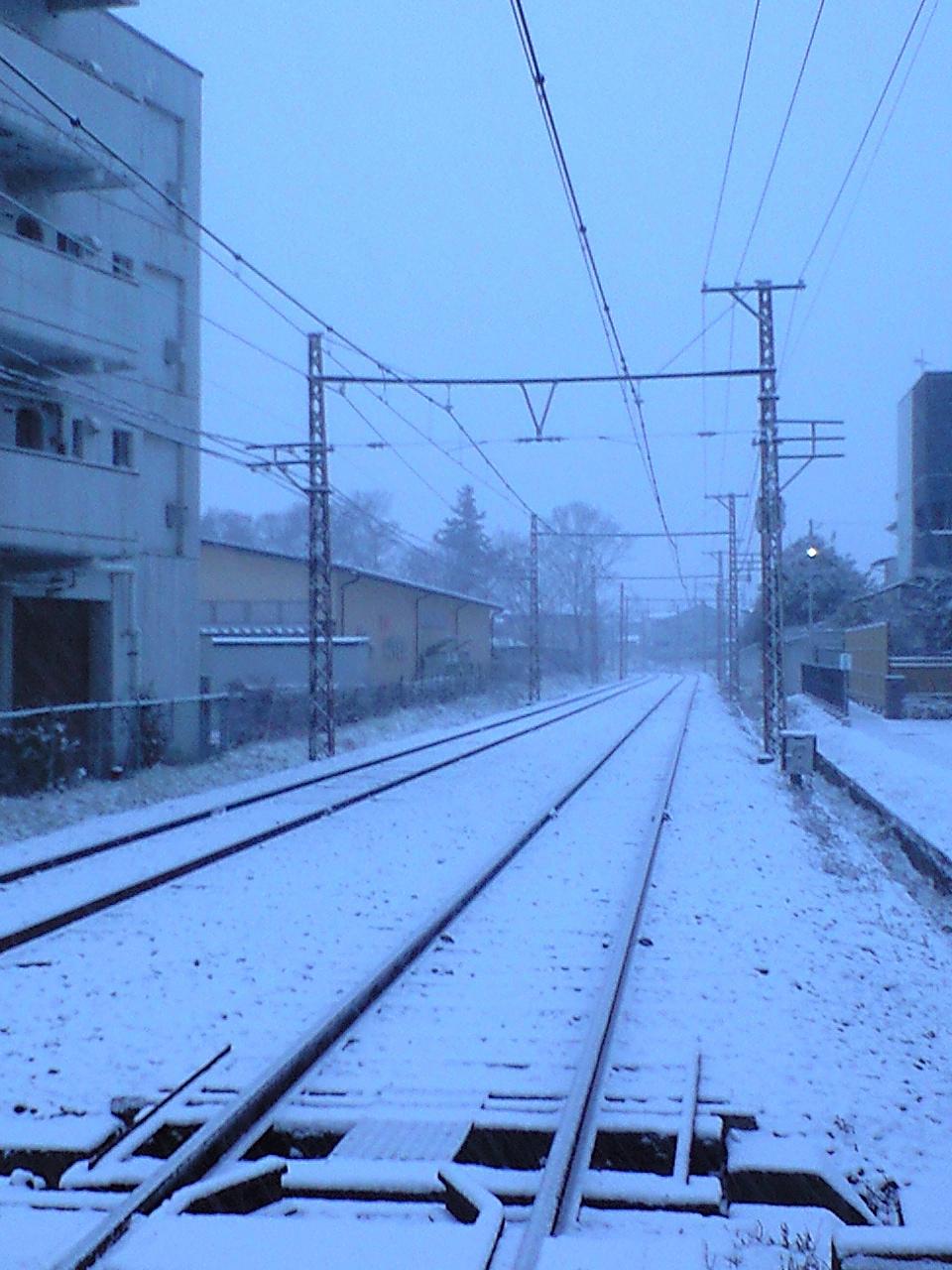 雪の桐原朝 (9)