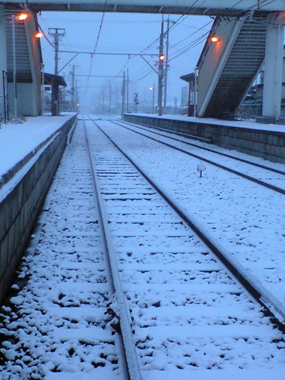雪の桐原朝 (11)