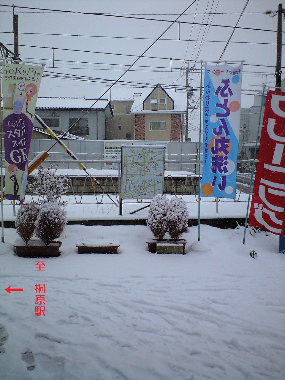 雪降りの朝 - コピー
