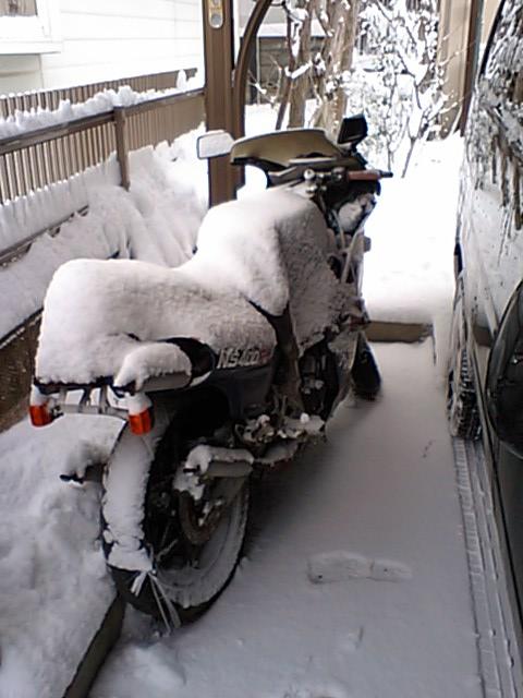 H23,1,16大雪 (19)