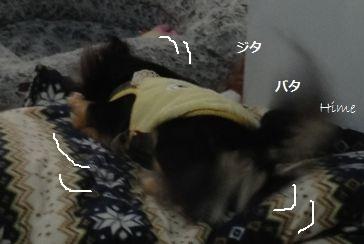 09_20130218143129.jpg