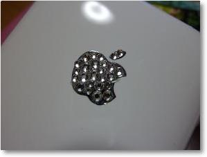 iPhoneカバー20100624-2