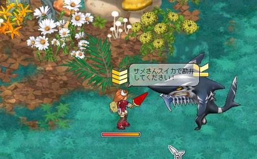 ボルサメ(*゚ω゚)