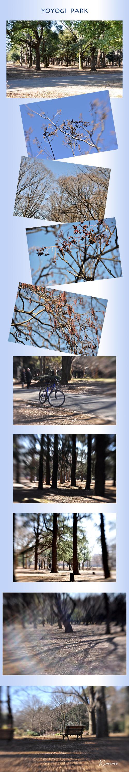 1月2日代々木公園