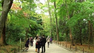 下鴨神社 礼の森