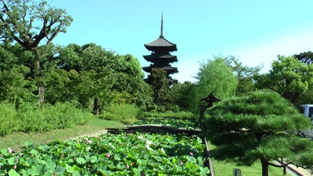 東寺 五重塔