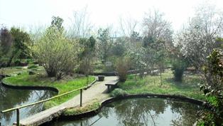 法華寺 華樂園