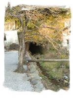 iokidou2.jpg