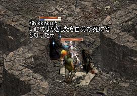 153_20110107163545.jpg