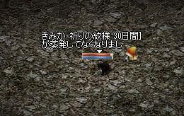 191_20110119140828.jpg