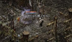 212_20110128161007.jpg