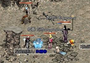 30_20101202095129.jpg