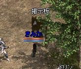 36_20101206013511.jpg