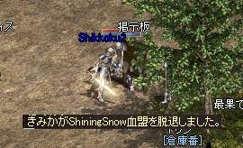 70_20101213004738.jpg