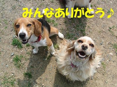 CIMG7005_sh01.jpg