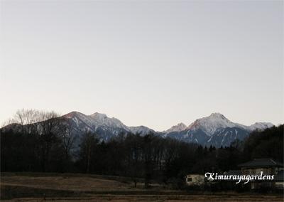 2010-1-29-4