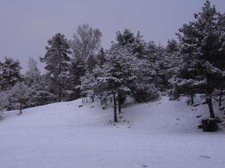ヨーテボリ雪景色02