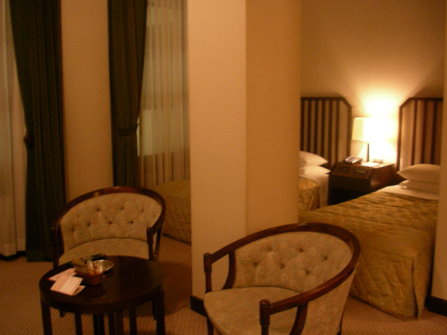 東京STホテル 317号室 室内