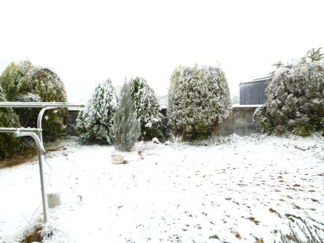 雪 020