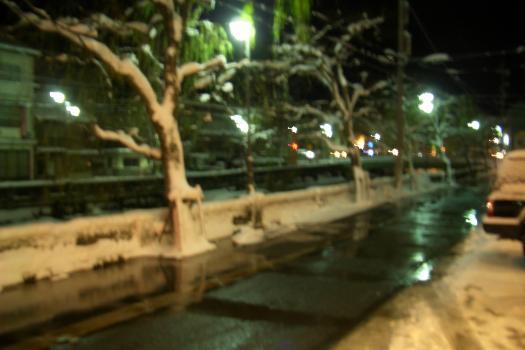 1月13日 20時30分 東山荘 玄関前 雪