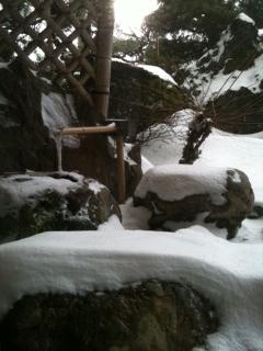 1月16日 東山荘の庭