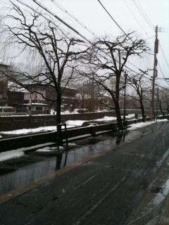 1月29日の城崎温泉路面状況