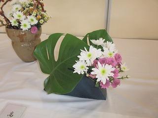 sugakiku0911