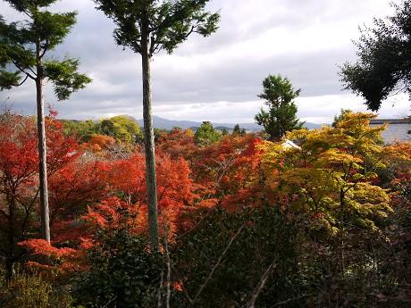 09天龍寺10望京の丘