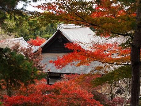 10天龍寺12望京の丘