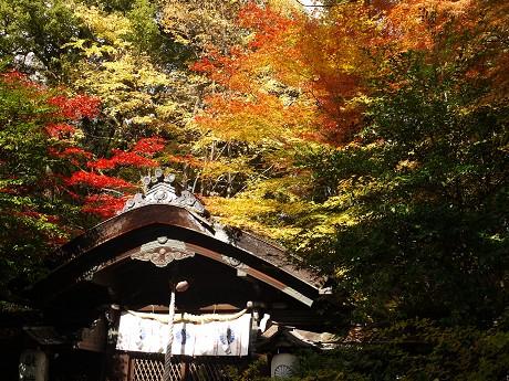 05梨木神社05本殿