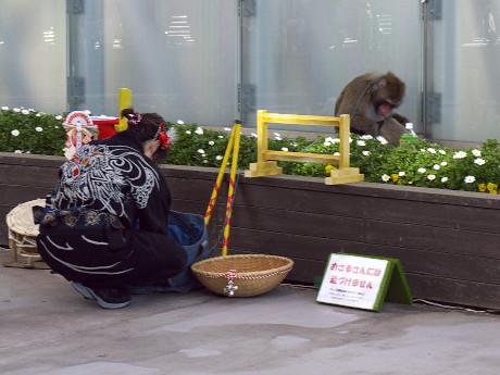 20東京タワー21猿