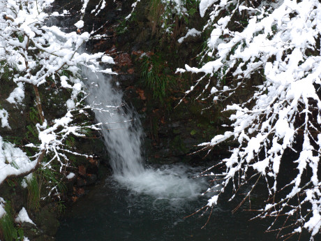 12落合の滝2
