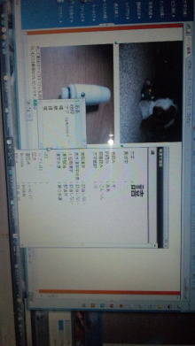 きりん・れもん・らいむの爽やかな碧い風-DVC00600.jpg