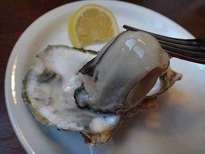 oyster201102c.jpg