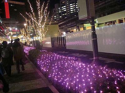 yuraku200912e.jpg