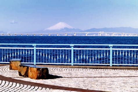 chiba-sodegaura-kaihinkouen-asa-4-2.jpg