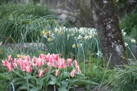 2011-04-05_18.jpg