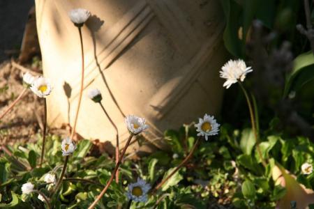 2011-04-06_03.jpg