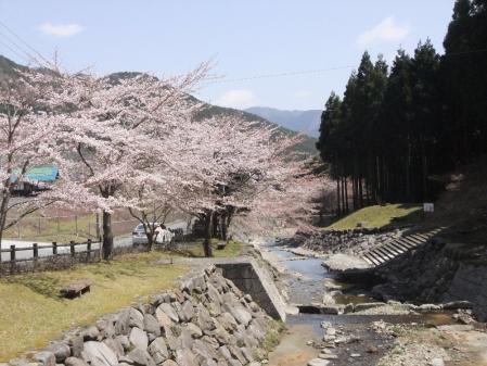 2011-04-12_56.jpg