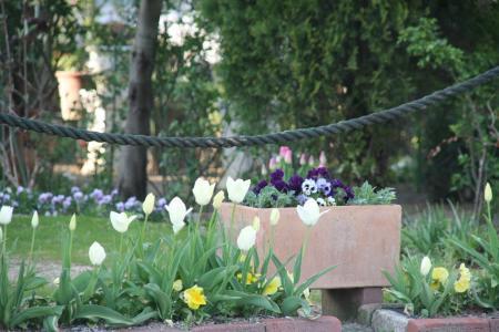 2011-04-13_08.jpg