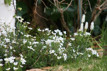 2011-04-14_02.jpg