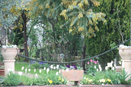 2011-04-15_91.jpg