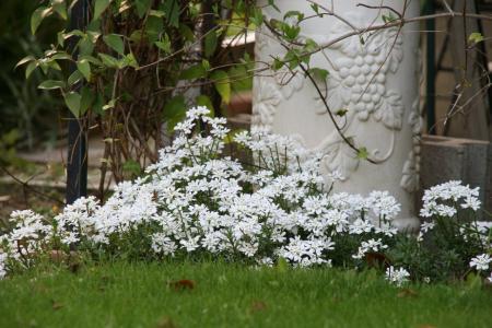 2011-04-26_42.jpg