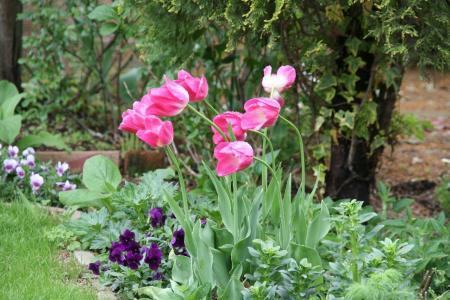 2011-04-28_21.jpg