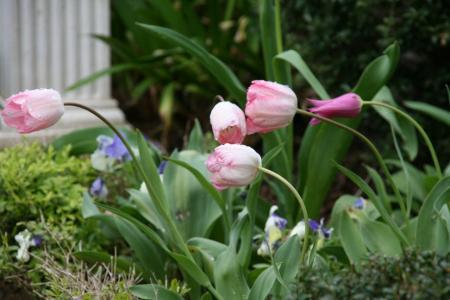 2011-04-28_23.jpg