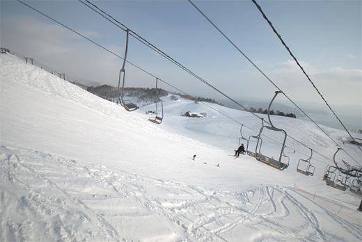 20120129-9.jpg