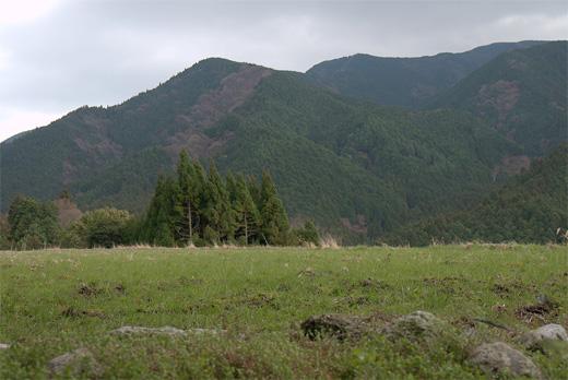 20120324-23.jpg